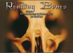 Reading Bones an Introduction to Osteomancy by Sheloya
